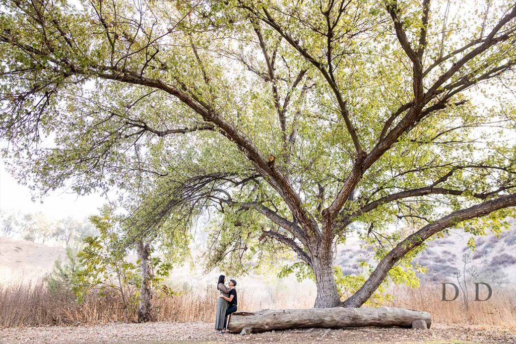 Mom and Dad under a Tree