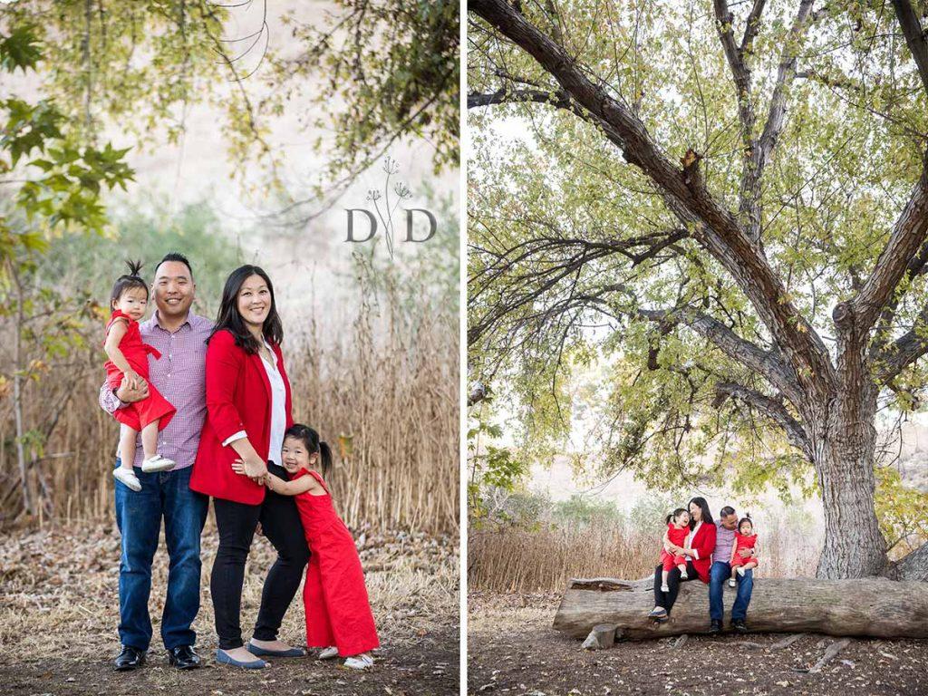 Bonelli Park Family Photo under tree