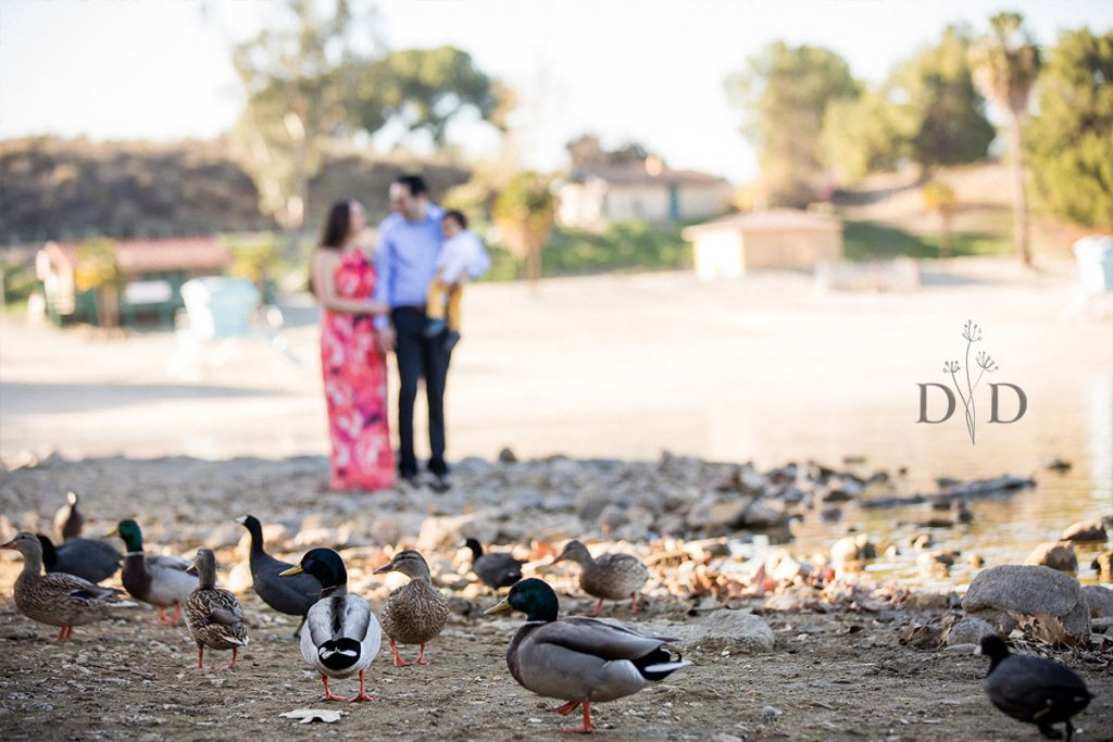 San Dimas Family Photography with ducks
