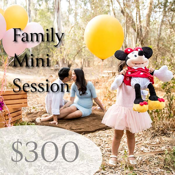 Mini Session Family Photography Price