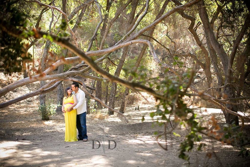 Maternity Photography Los Angeles County
