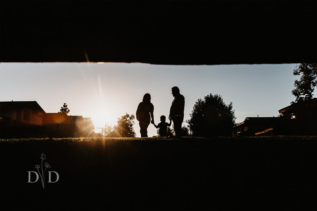Family Photos Silhouette with Sun