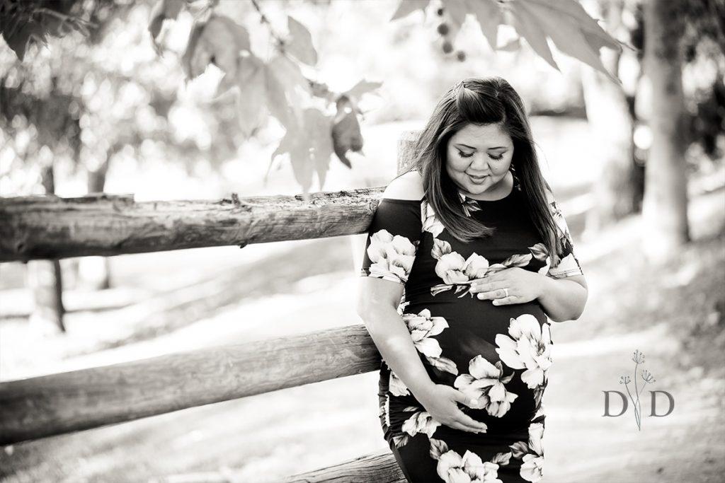 Maternity Photography Walnut