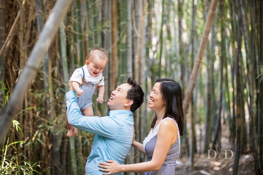 Family Photo Bamboo Forest