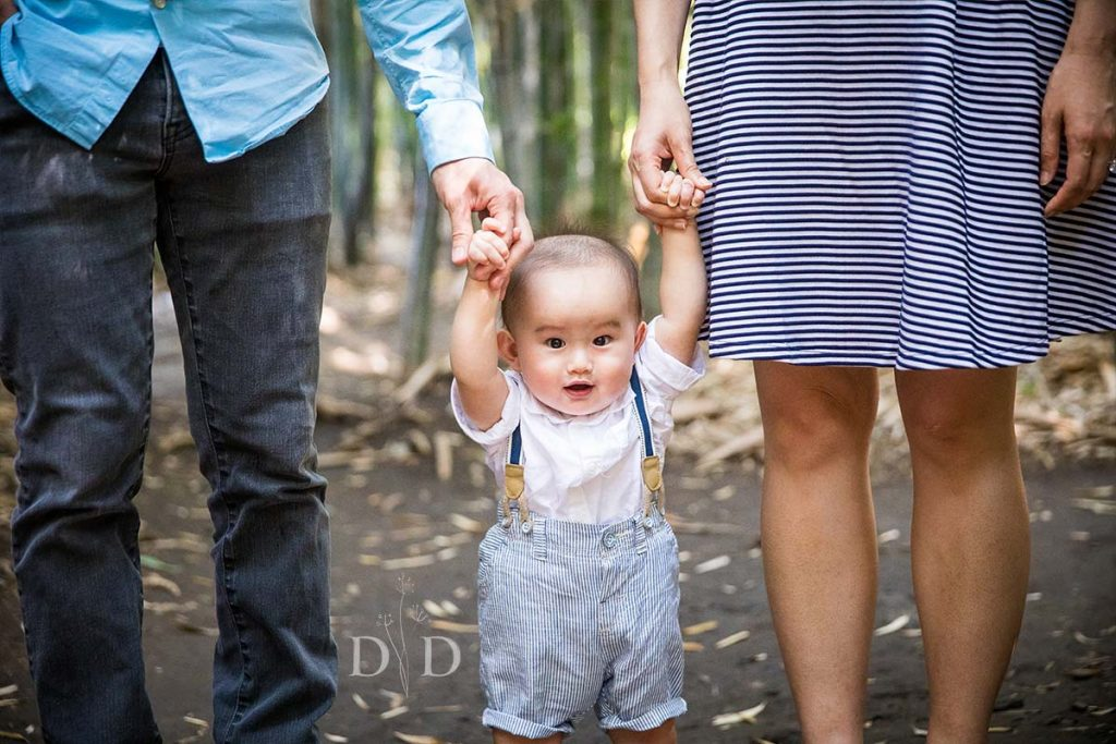 Family Photography Bamboo Forest