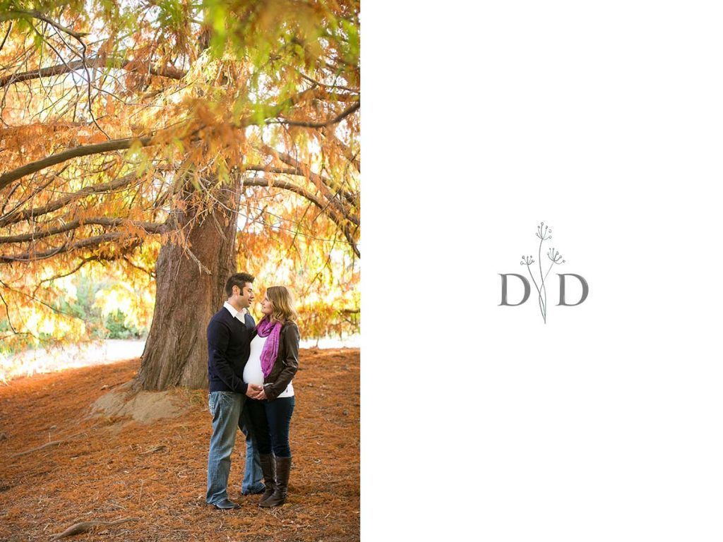 Maternity Photography with Fall Leaves in Fullerton