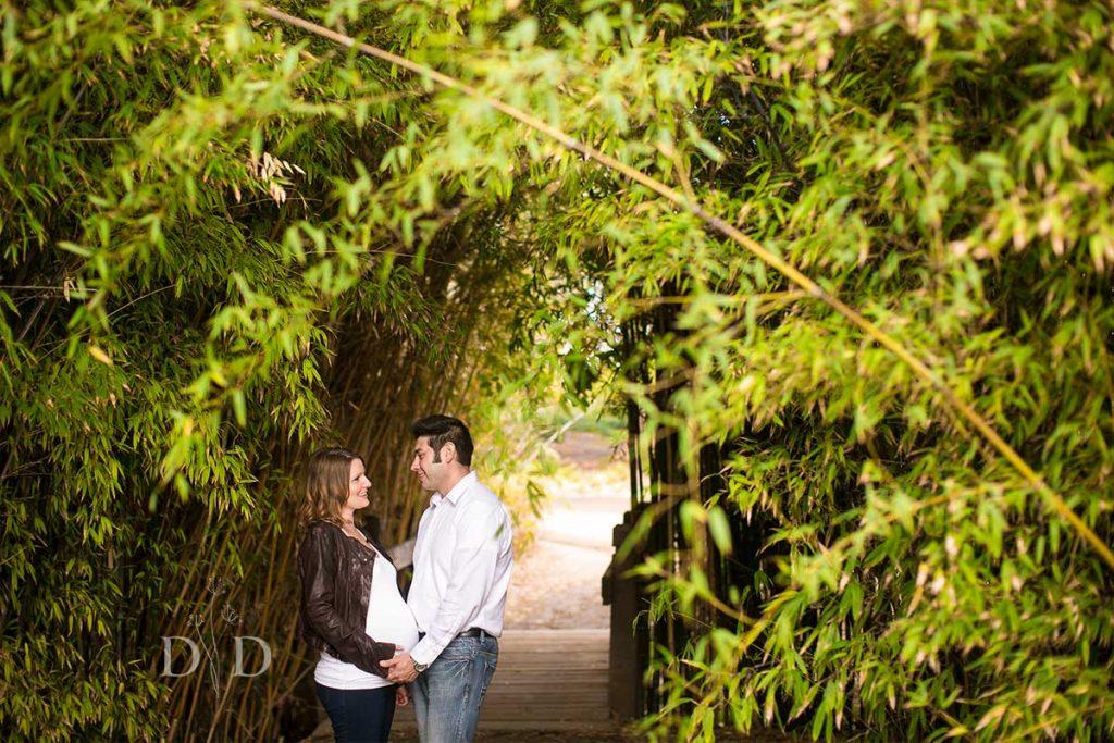 Fullerton Arboretum Maternity Photos with Bamboo