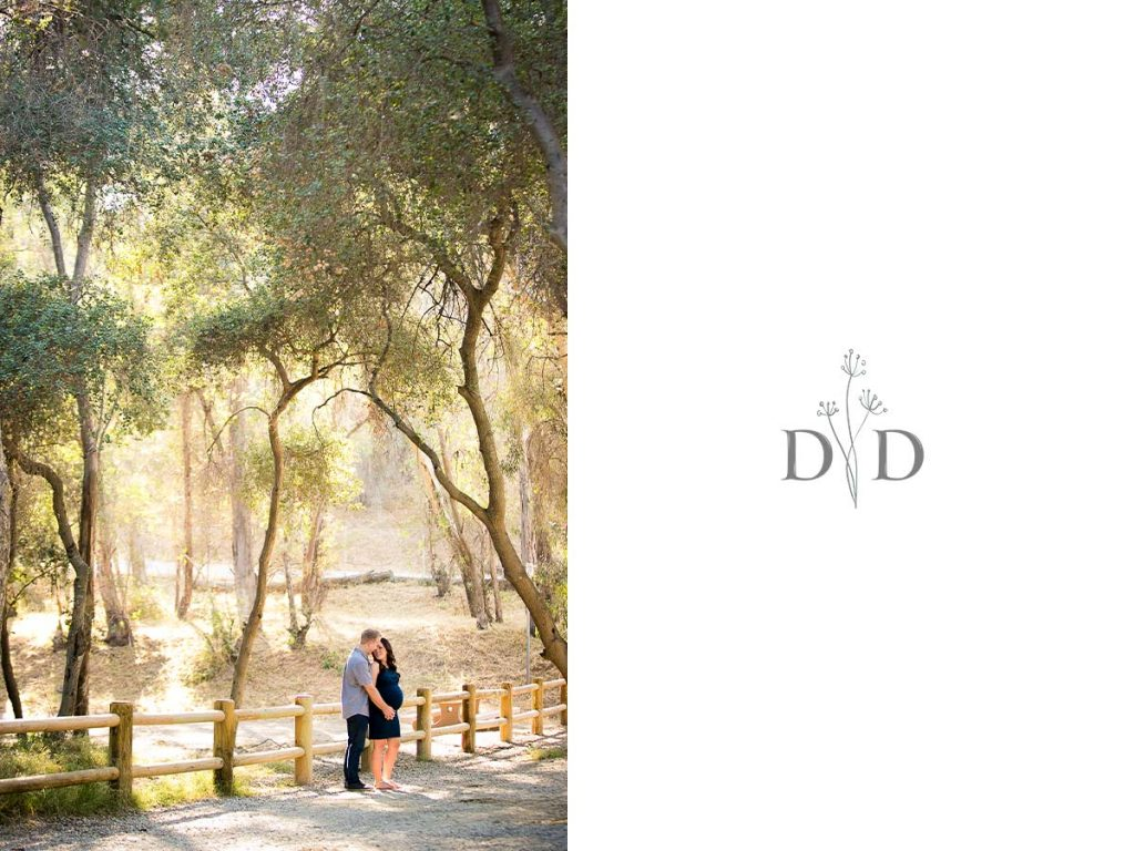 Walnut Creek Park Maternity Photography