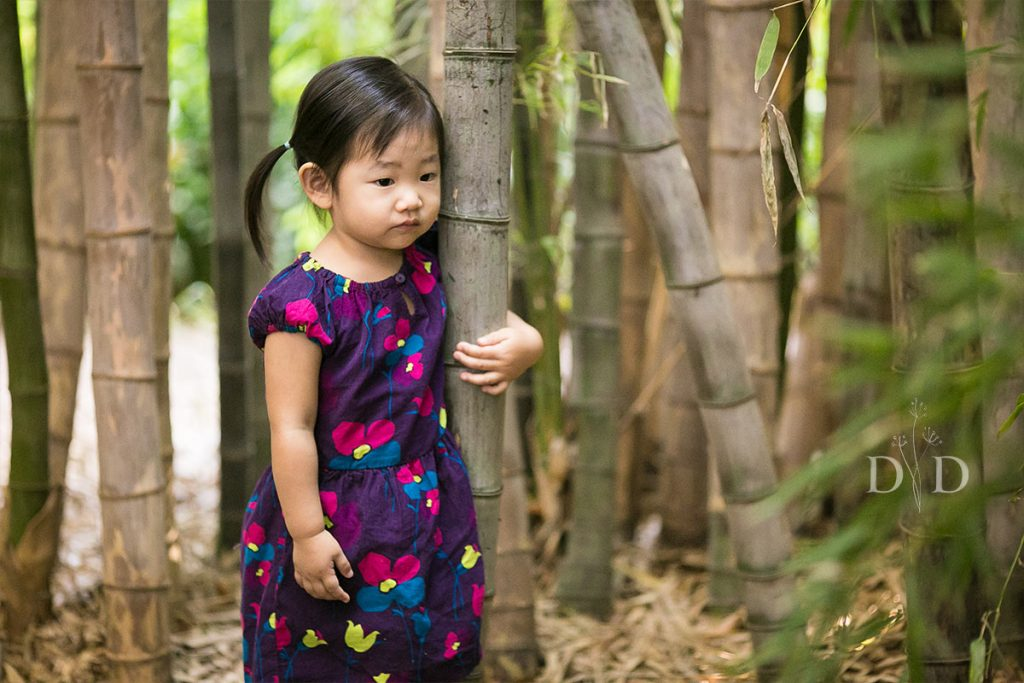 Toddler Family Photo in Bamboo Forest