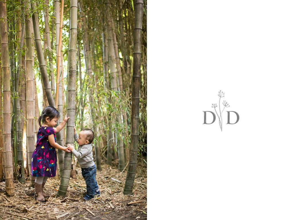 Family Photo in Bamboo Forest