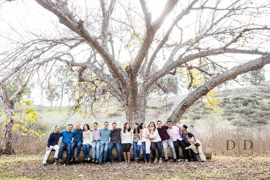 Large Family Photo under a Tree