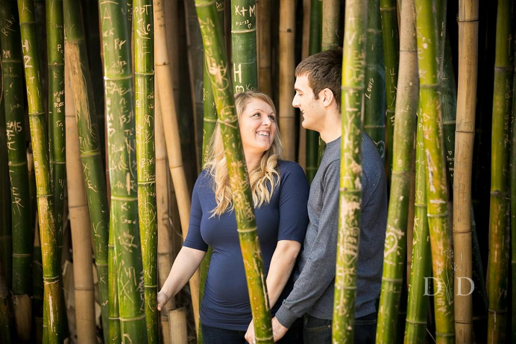 Maternity Photos with Bamboo