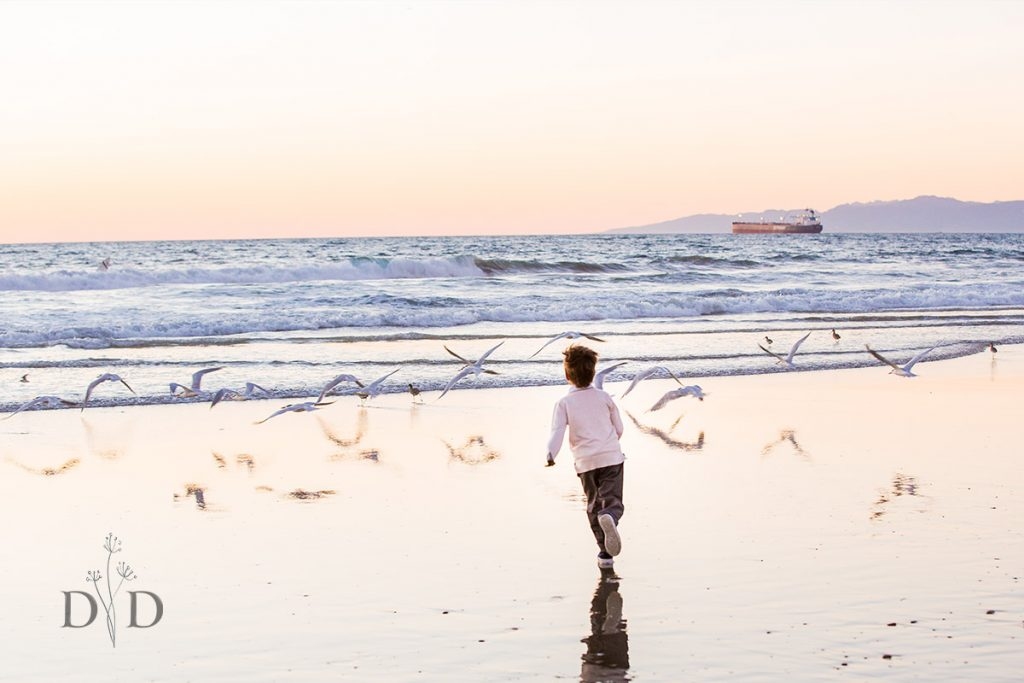 Lifestyle Photo of Child at the Beach with Seagulls