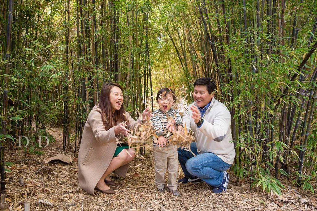 Fullerton Family Photography with Bamboo