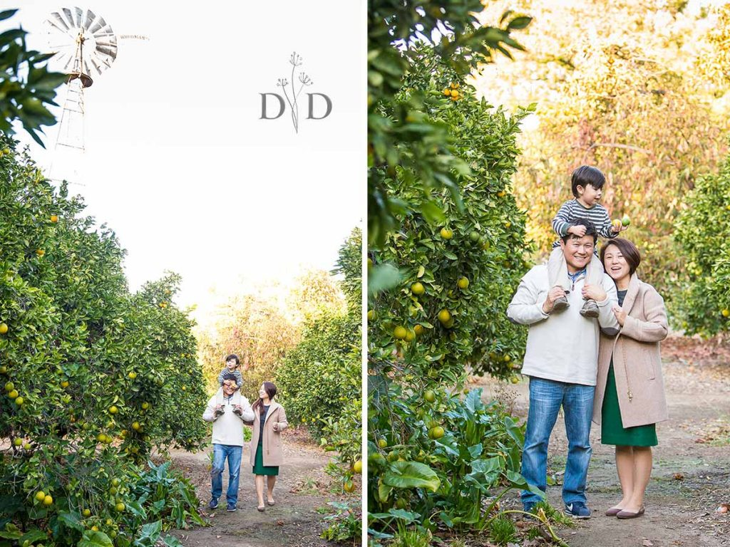Fullerton Family Photography with and Orchard