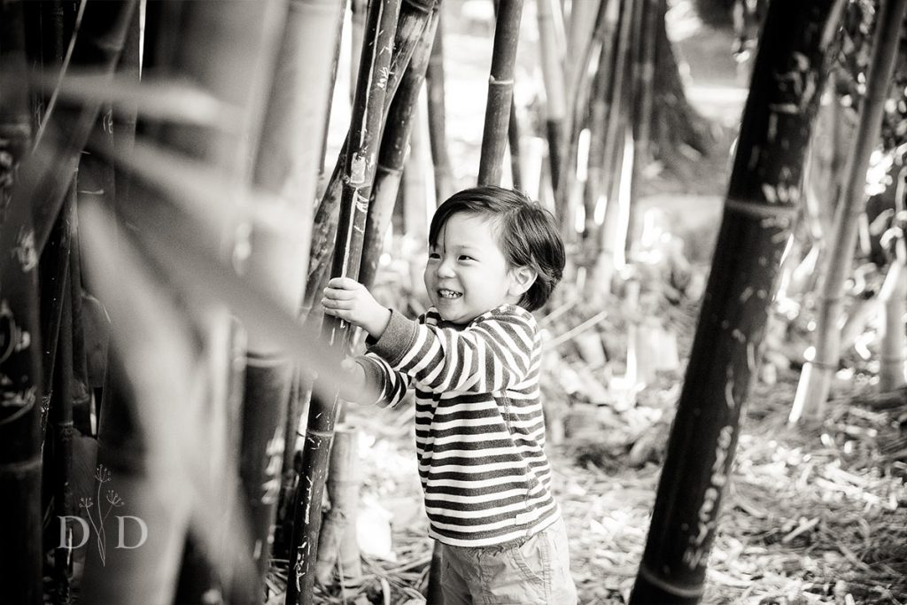 Family Photography at the Cal State Fullerton Arboretum Bamboo